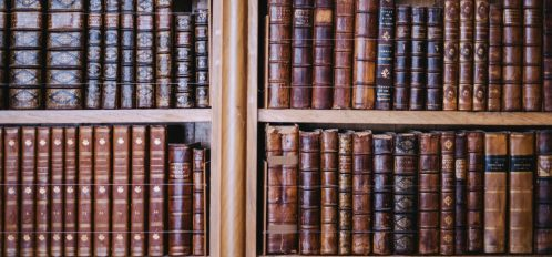 Rows of antique books at Mississippi Plantation Tours